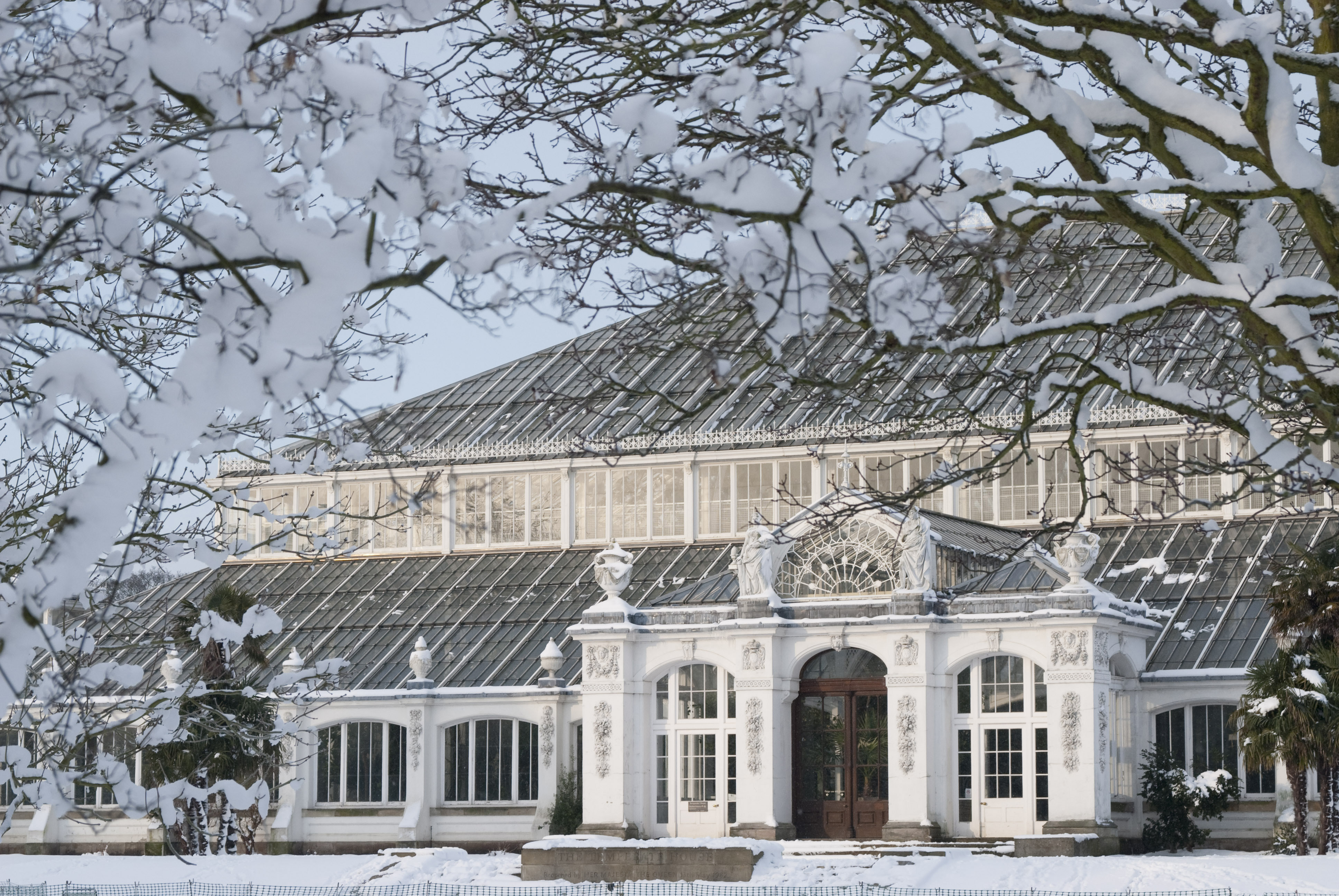 free entry to kew gardens during festive season parenting