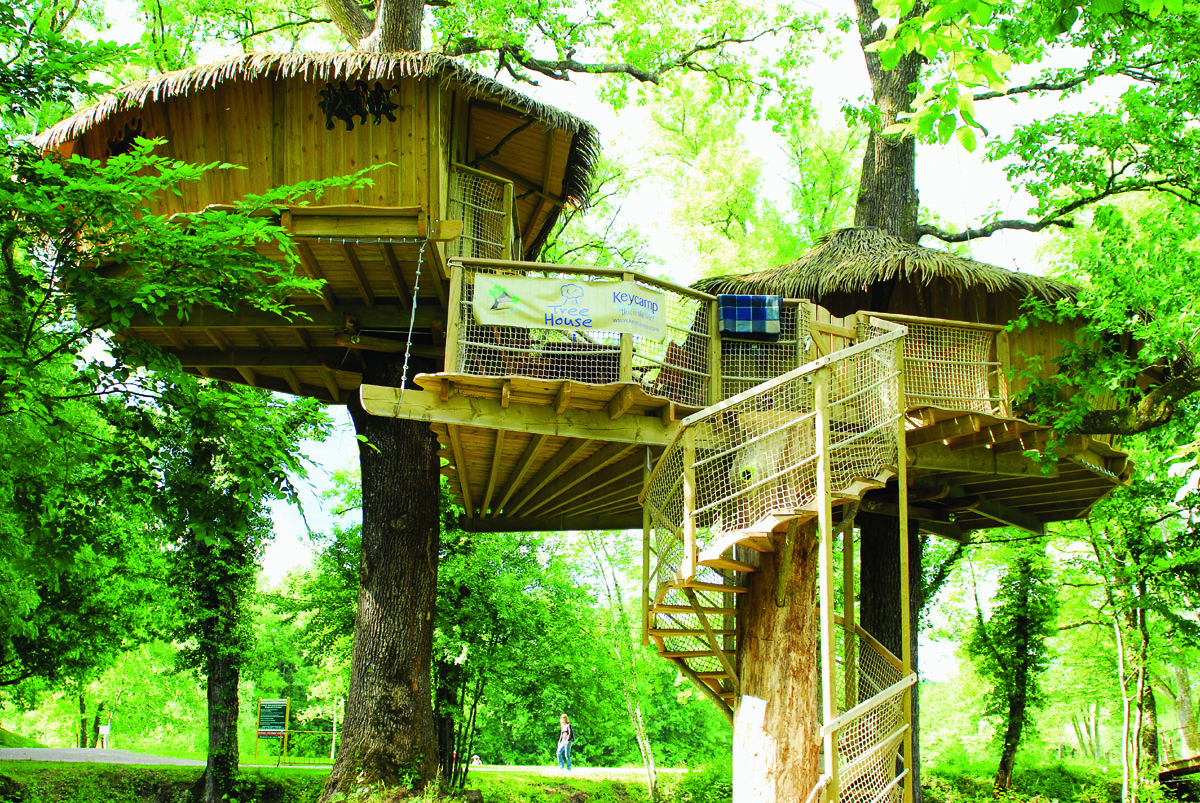 Tree Top Houses On Pinterest Tree Houses Treehouse And